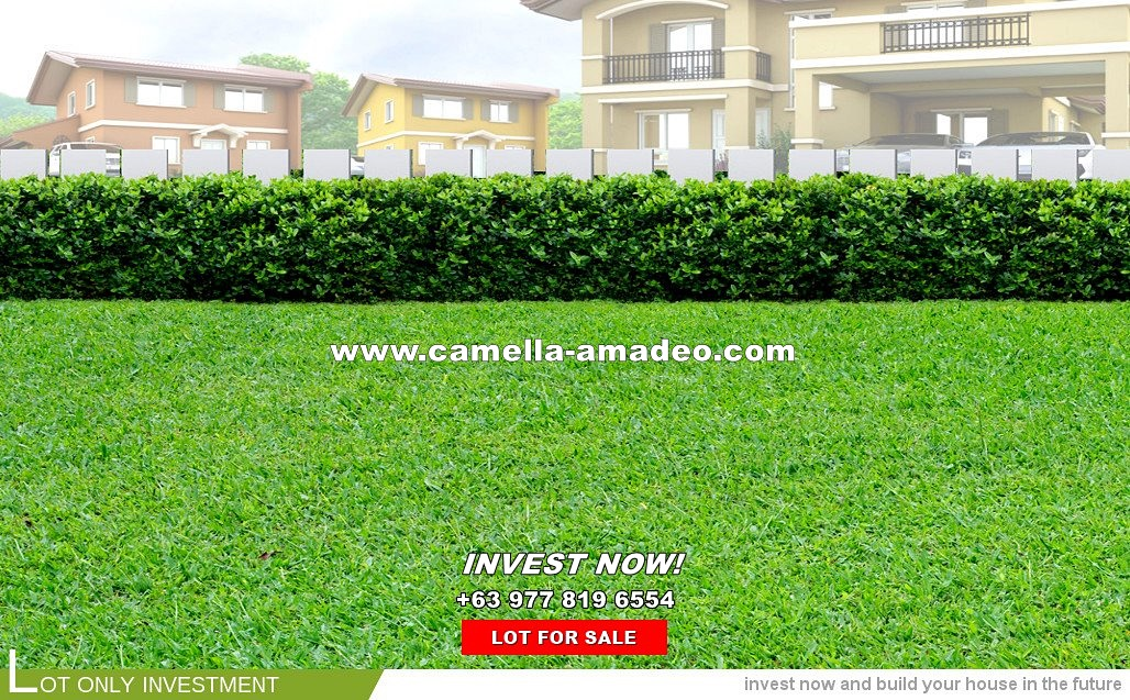 Lot House for Sale in Amadeo